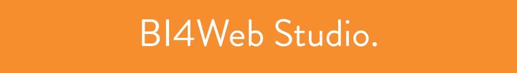 Bi4web_studio